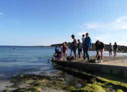 Essai du drône-trimaran en mer